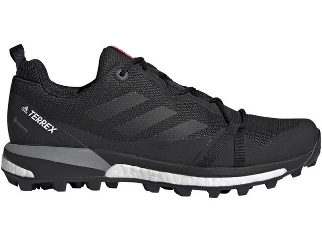 adidas TERREX Skychaser LT Gore-Tex Hiking Shoes Women, carbon/core black/acitve pink